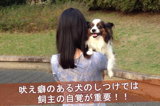 吠え癖のある犬のしつけでは飼主の自覚が重要